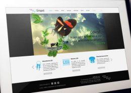 Portfolio BlueSky System: Empol - Miniatura